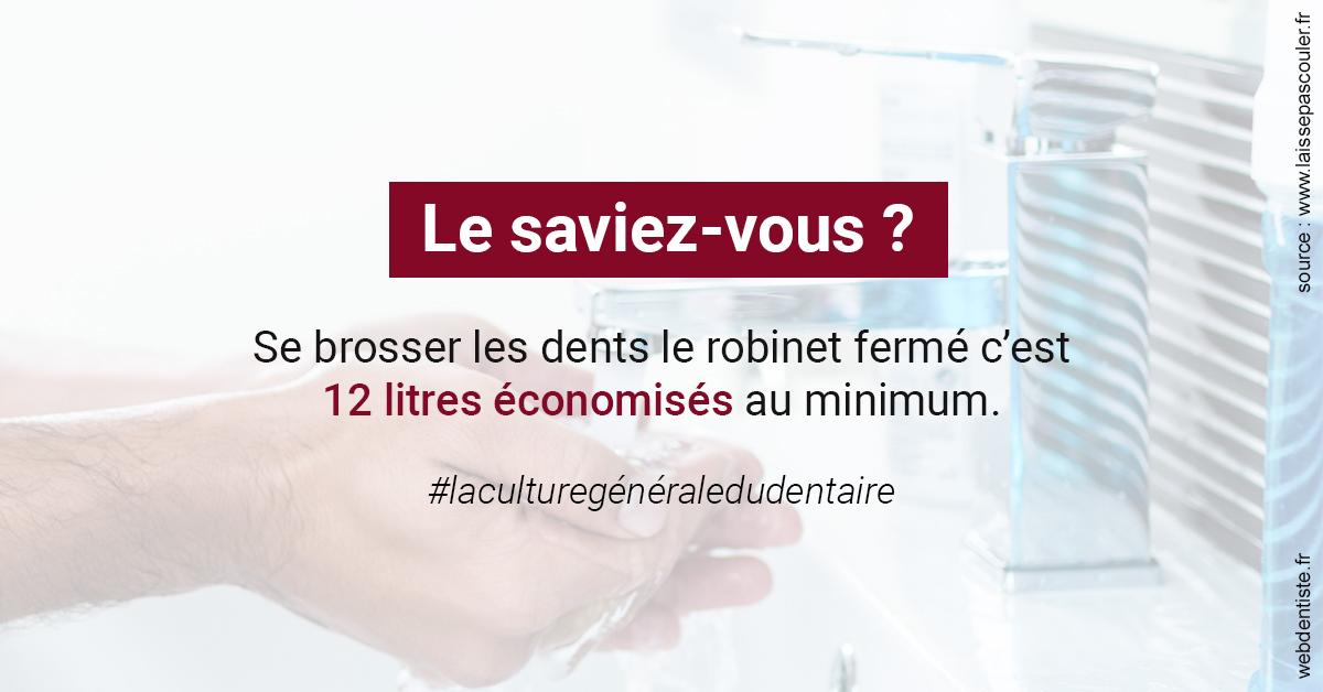 https://www.dentistesmerignac.fr/Economies d'eau 2